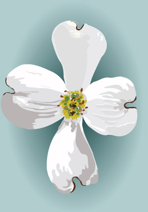 Dogwood Flower Clip Art