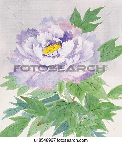 Stock Illustration   Peony Close Up  Fotosearch   Search Eps Clipart