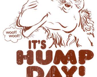 Hump Day Clip Art – Cliparts
