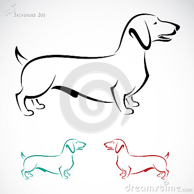 Of Polish Sausage On White Background Fotosearch Search Clipart   Free
