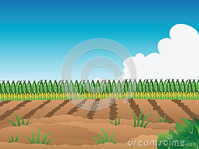 Crop Field Clipart - Clipart Suggest