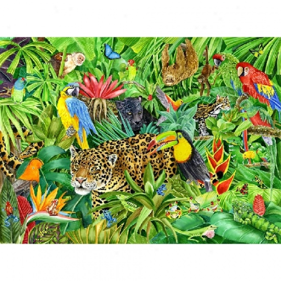 Image result for clipart rainforest