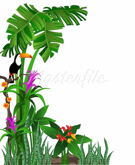 Clip Art Rainforest Clip Art rainforest border clipart kid jungle clip art 400 04648312w jpg