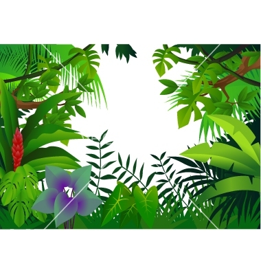 Clip Art Rainforest Clip Art rainforest border clipart kid trees panda free images