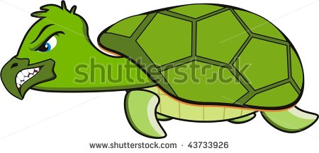 Angry Turtle Stock Photos Images   Pictures   Shutterstock