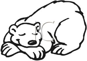 Cartoon polar bear sleeping - istockphoto.com