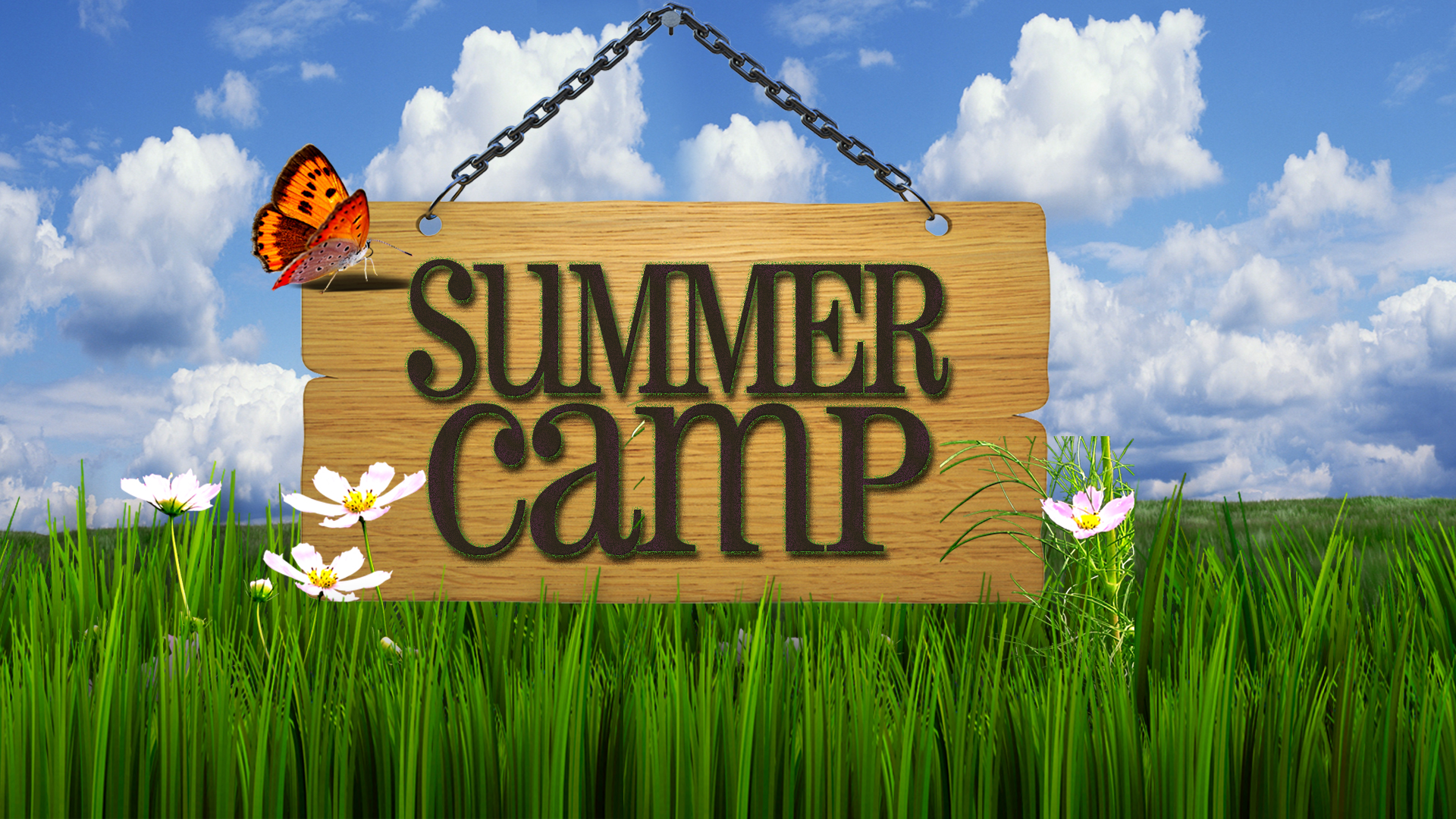 Ecf Interactive    Summer Camps