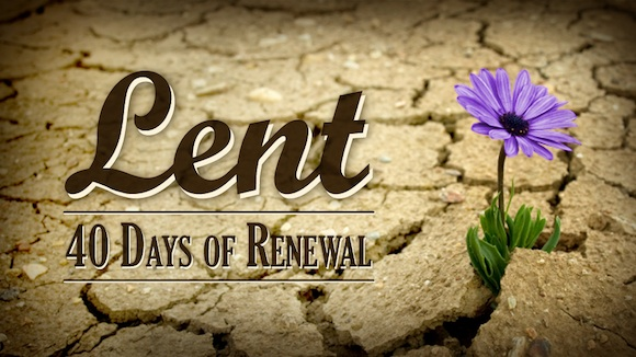 Experience The Joy Of Lent   Soul Shepherding