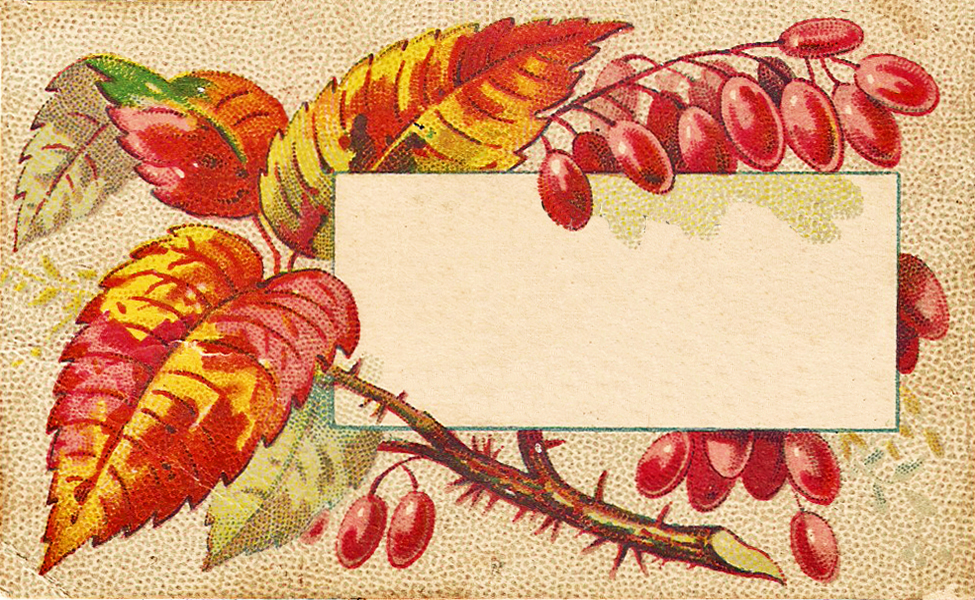 Free Vintage Clip Art   Autumn Leaves Calling Cards