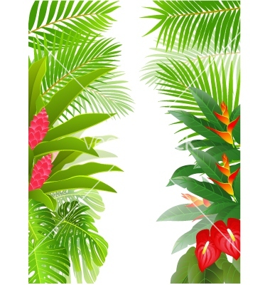 Tropical Forest Landscape Vector Clipart Pic  19