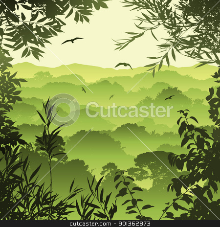 Tropical Forest Landscape Vector Clipart Pictures