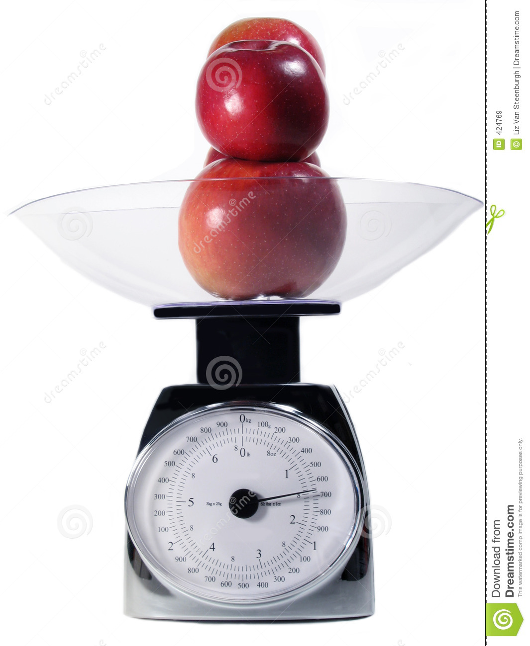 Food Scale Royalty Free Stock Images   Image  424769