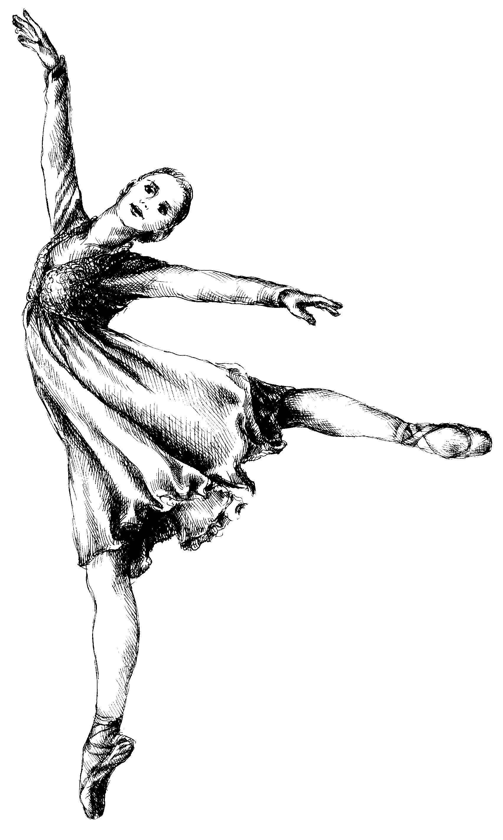 Gallery For Ballet Clipart Displaying 17 Images For Ballet Clipart