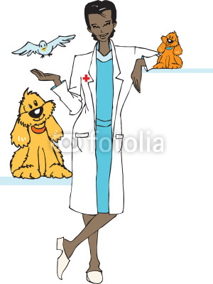 Job Series   Veterinary   Clipart Stock Image And Royalty Free