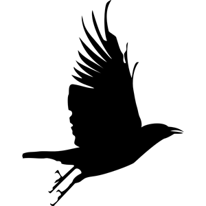 Flying Crow Clipart Crow