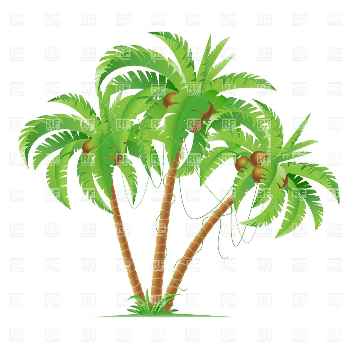 Three Cartoon Coconut Palm Trees Travel Download Royalty Free Vector