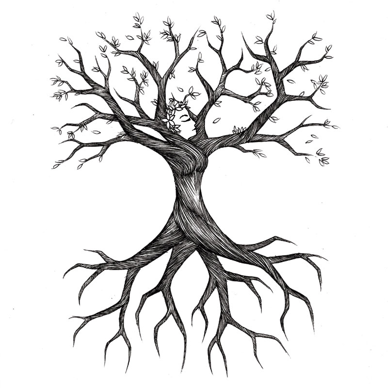 Bare Tree with Roots Clip Art – Cliparts