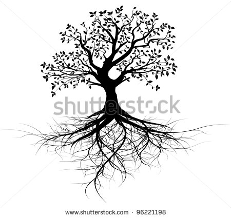 Whole Black Tree With Roots Isolated White Background Vector   Stock