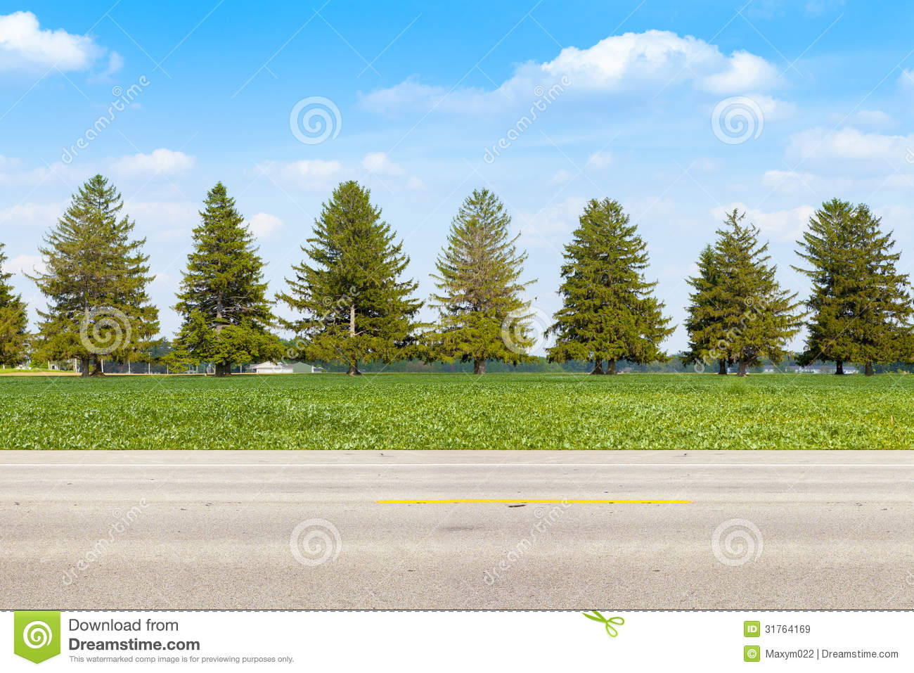 American Country Road Royalty Free Stock Images   Image  31764169