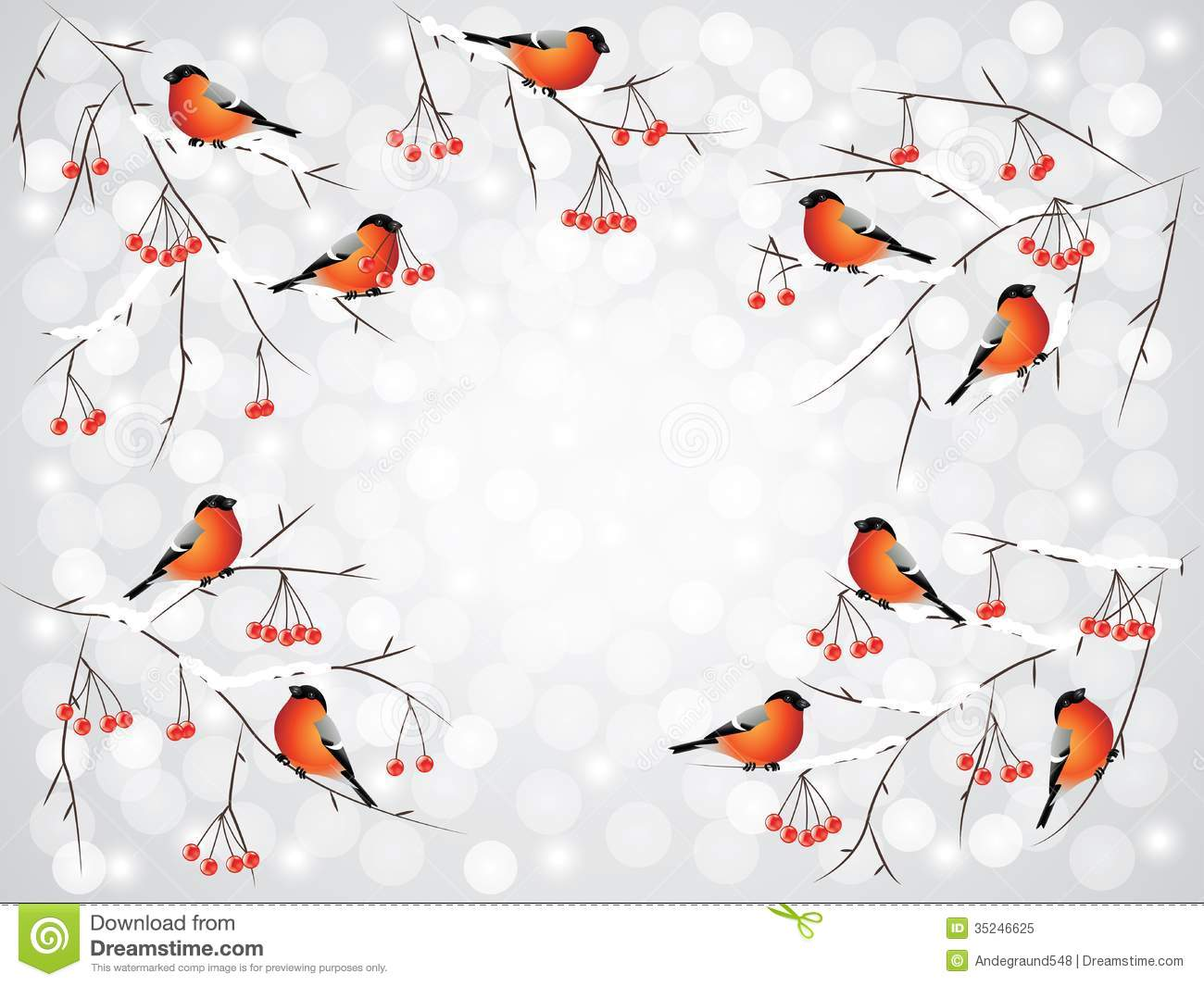 Bullfinch Birds On Branches Winter Background Royalty Free Stock Photo