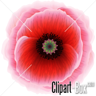 Related Red Poppy Flower Cliparts