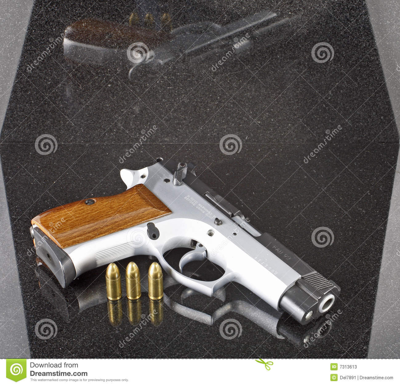 9mm Automatic Pistol With Three Bullets