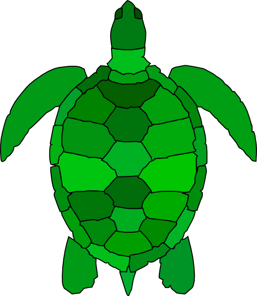 Turtle Clip Art At Clker Com   Vector Clip Art Online Royalty Free