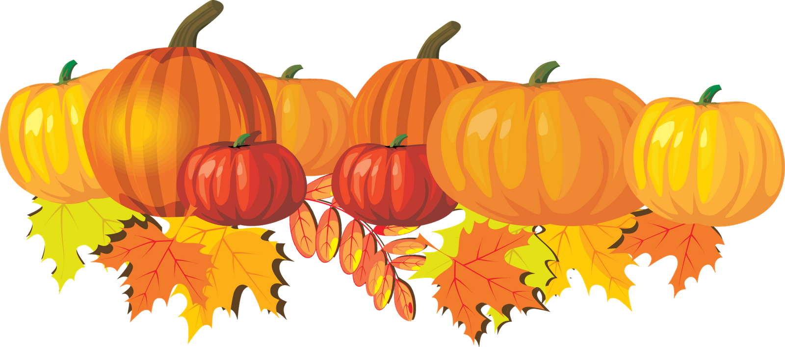 Clip Art Pumpkin Images Clip Art fall pumpkin borders clipart kid 19 pictures free cliparts that you can download to you