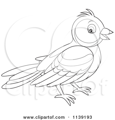 Cartoon Of A Cute Black And White Bird   Vector Clipart By Alex