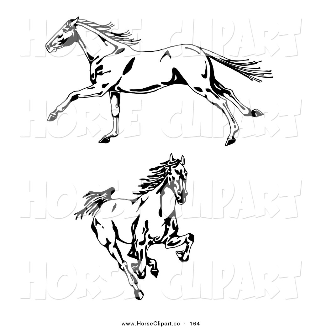 Clip Art Clip Art Of Two Galloping Wild Stallion Horses One In Profile