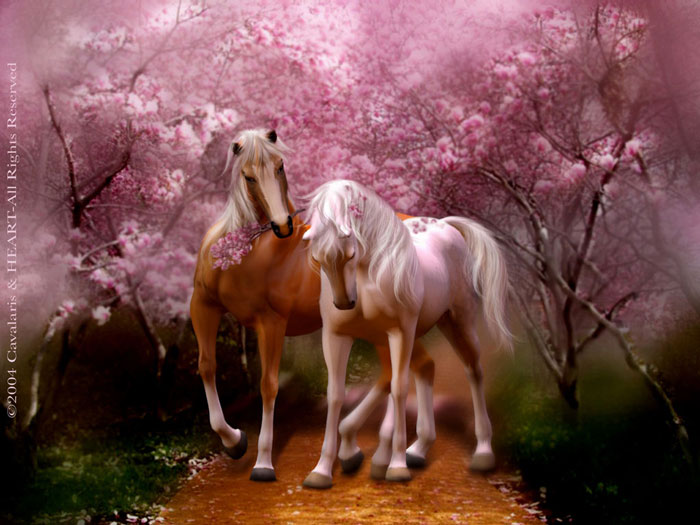 Horse Series  Spring Love Two Horses Walking On A Path Of Blossoms