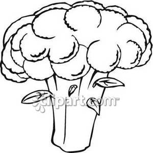 Black And White Broccoli   Royalty Free Clipart Picture