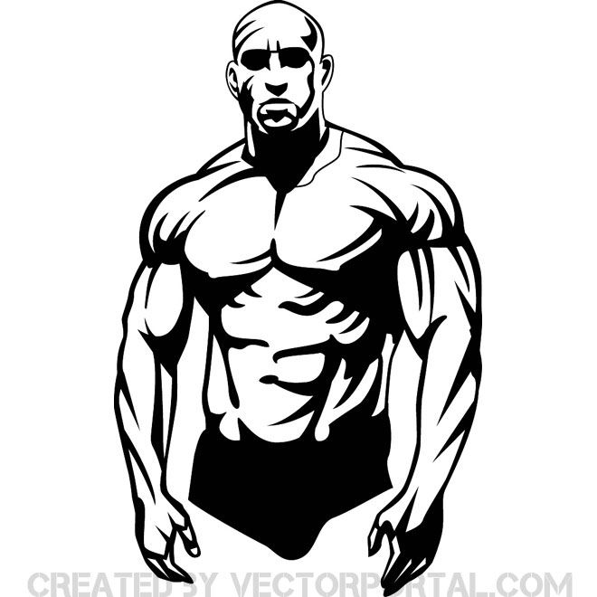Bodybuilder Vector Clip Art   Download At Vectorportal