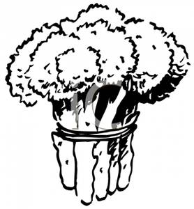 Clipart Image Of Black And White Bunch Of Broccoli
