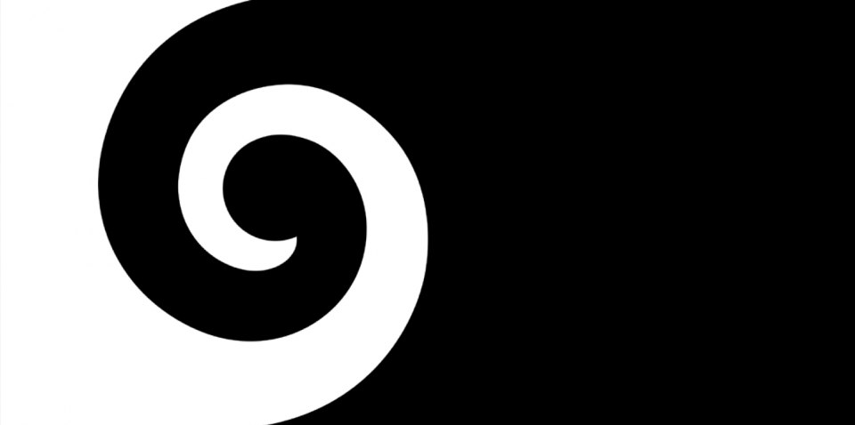 New Zealand Is Voting On A New Flag   And The 4 Designs Have The