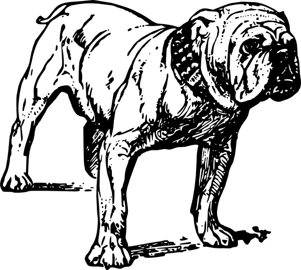 Bulldog Clipart Free Bulldog Clip Art Is Free
