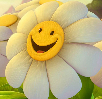 It Is A Very Cute Smiley Face Of Sun Flower   In The Morning It Smile
