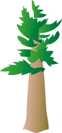 Download White Pine Tree Clip Art Vector For Free