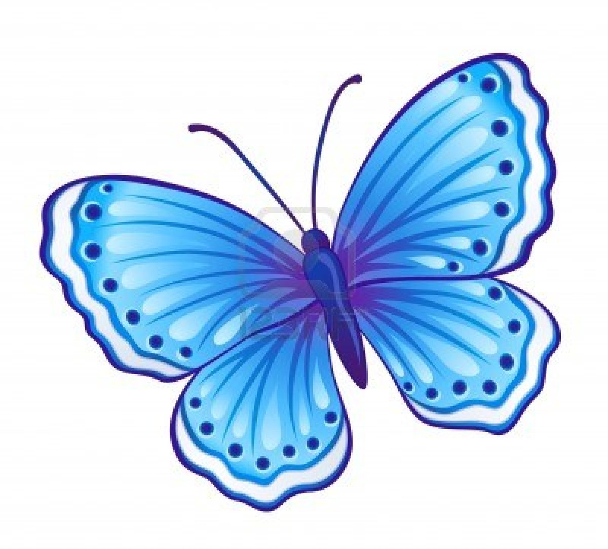Vector Blue Butterfly Polyommatus Icarus With Open Wings Blue Morpho