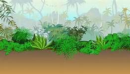 Jungle Safari Backdrop   Bing Images   Vbs Jungle Safari   Pinterest