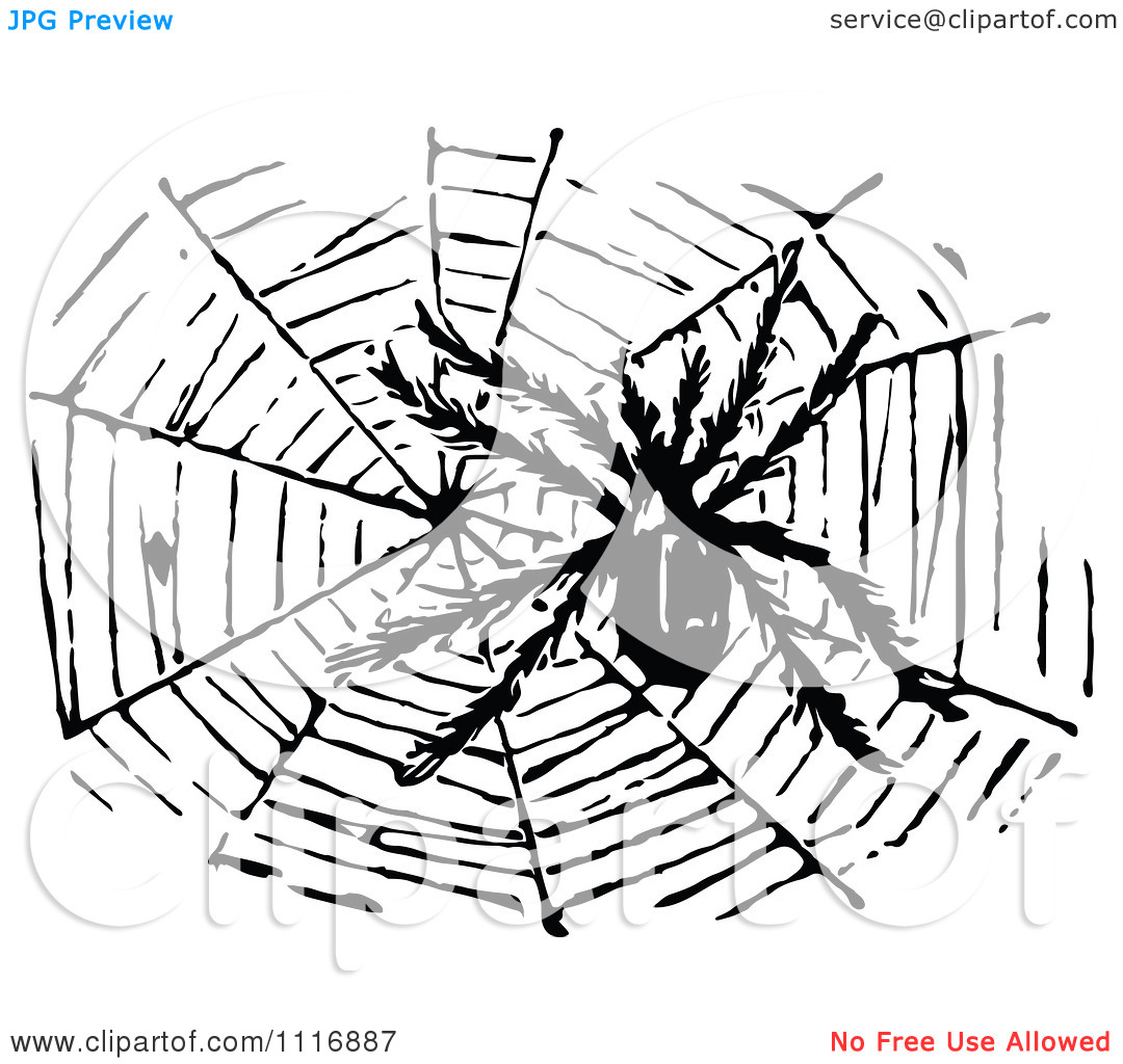 Clipart Of A Retro Vintage Black And White Hairy Spider And Web