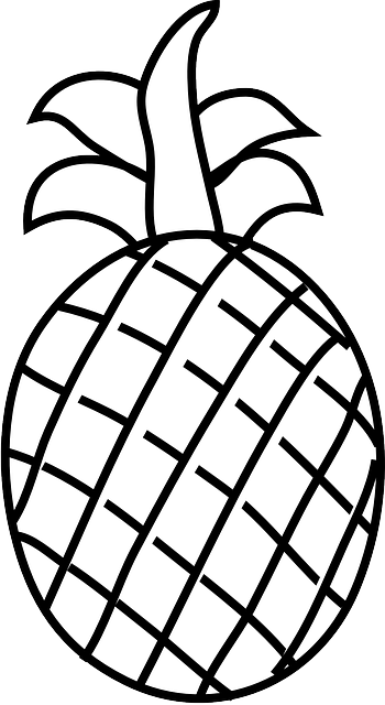 Fruit Outline Drawing   Clipart Panda   Free Clipart Images