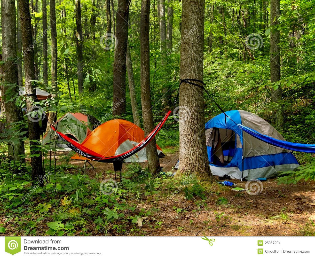 Camping In The Woods Stock Images   Image  25367204
