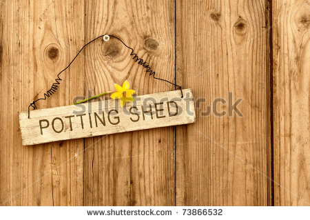 Potting Shed Sign On Wooden Background With Daffodil Flower   Stock