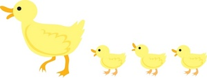 Duckling Clipart Image   A Mother Duck With A Line Of Ducklings
