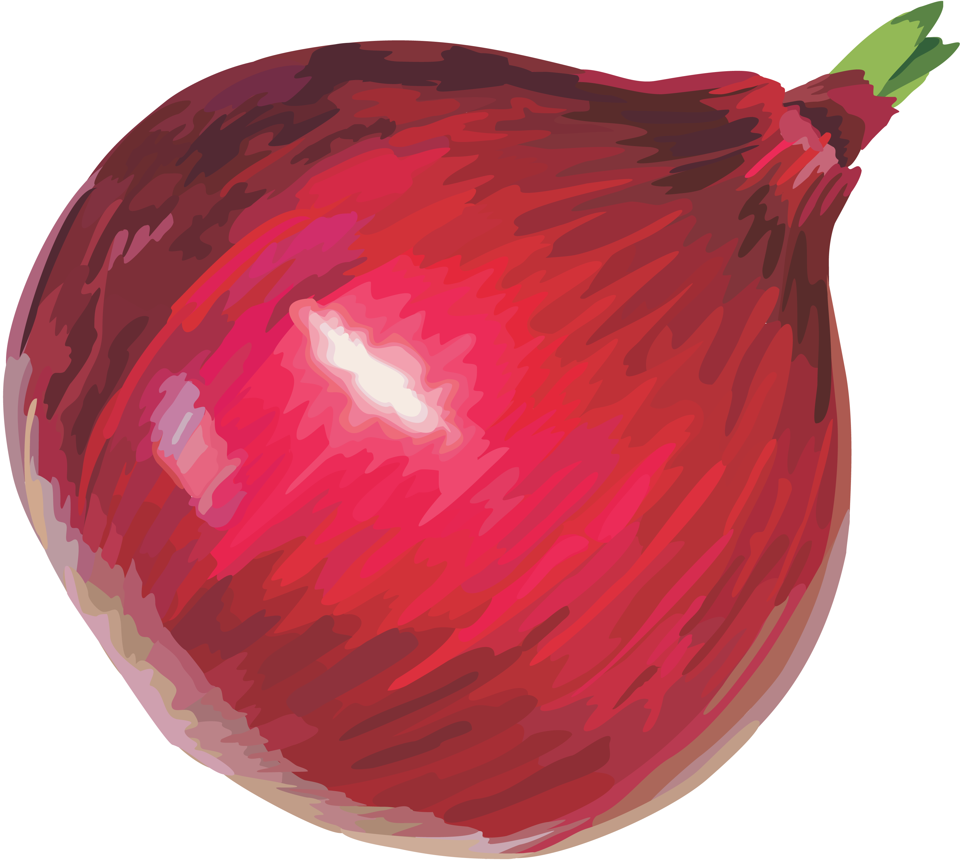 Clip Art Red Onion Clipart - Clipart Suggest