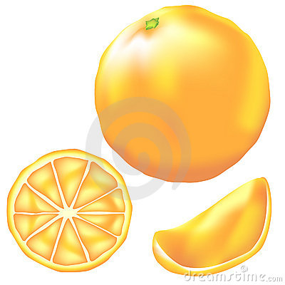 Whole Orange Slice And Wedge In Vector Stock Image   Image  8678421