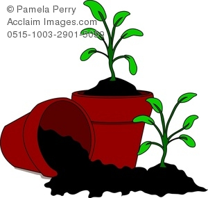 Clip Art Image Of Cartoon Soil And Seedlings In Pots   Acclaim Stock