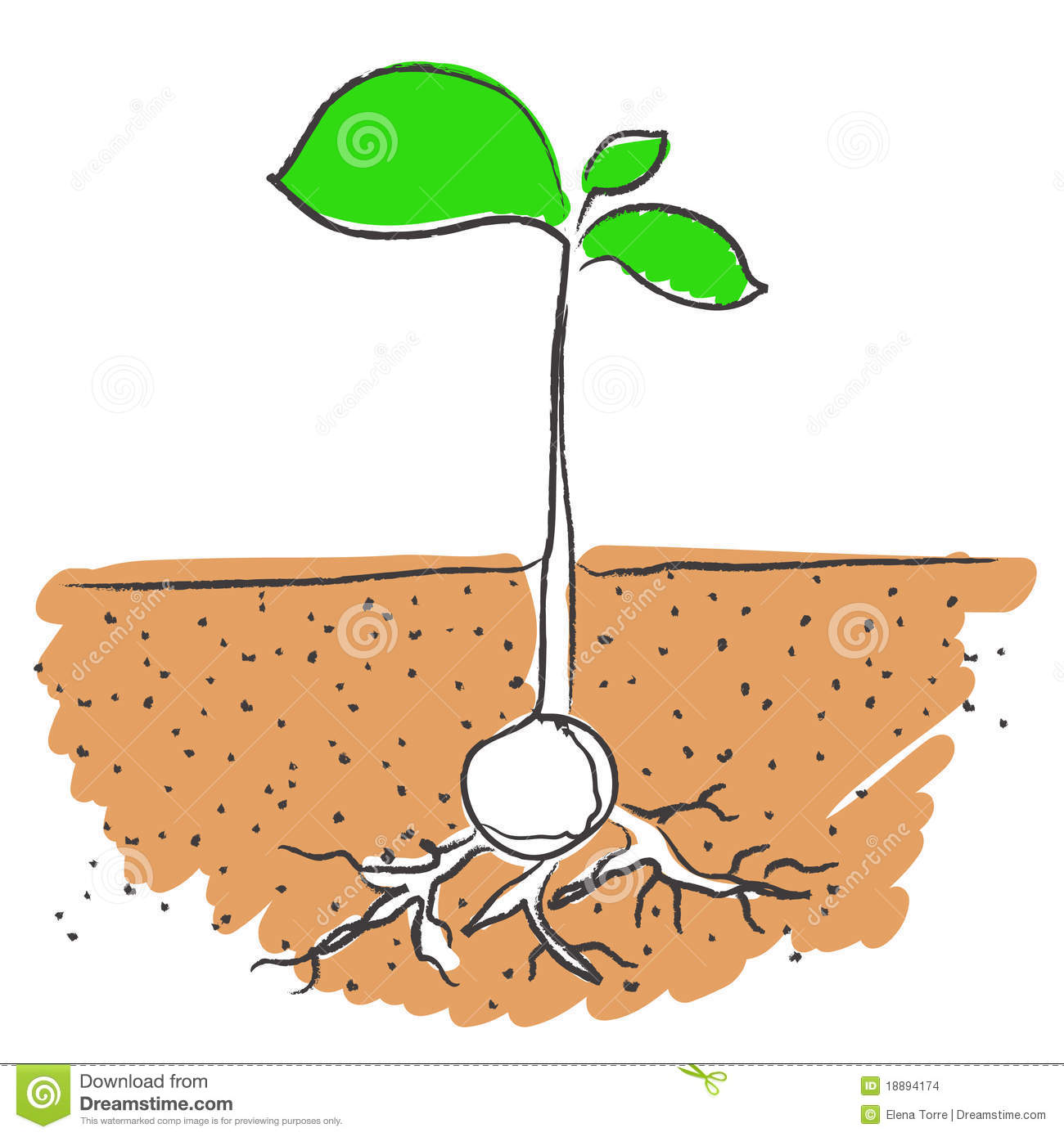 Seed growing clipart clipart suggest for Soil clipart