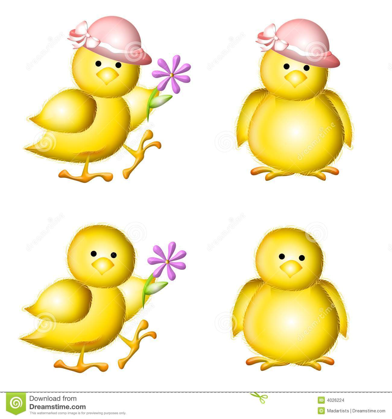 Chicks Wearing Hats And Holding Flowers Isolated For Easy Placement